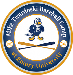 Emory Baseball Camps