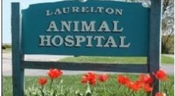 Laurelton Animal Hospital